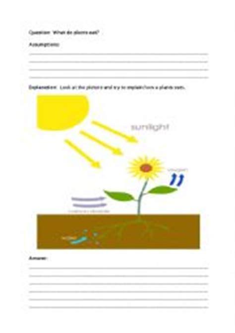 Peer Edit Worksheet - 535 Words Bartleby